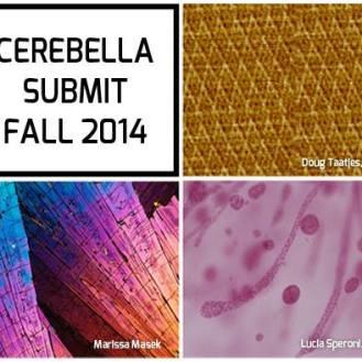 """© Cerebella Design """"Cerebella Submit""""."""