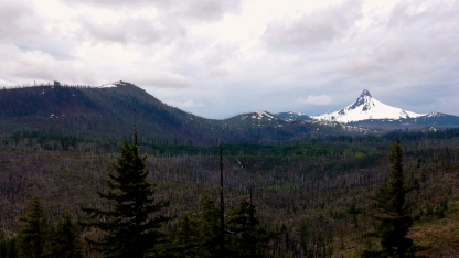 Mount Washington. Those trees are remnants of a large forest fire that swept the art years ago.
