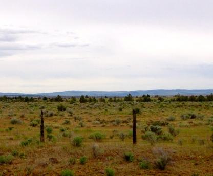 Oregon terrain, near the Mount Hood area.